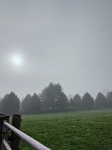 """The sun is trying to peek through the morning fog. There are also several different types of fog – radiation fog, sea fog, ground fog, advection fog, steam fog or evaporation fog, precipitation fog, upslope fog, valley fog, ice fog, freezing fog, and artificial fog, which is when water, glycerin or propylene glycol are mixed together to create """"fog juice"""" and then passed through a super-heated nozzle at high pressure and atomized into the air in a fine mist."""